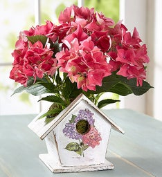 Birdhouse of Blooms®