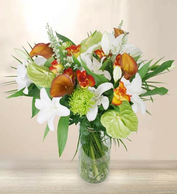 Premium Orange  White Flowers