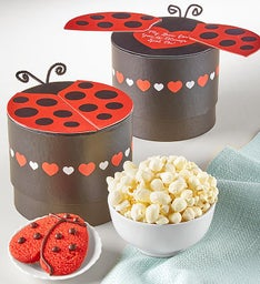 Spot On Love Ladybug Treat Box