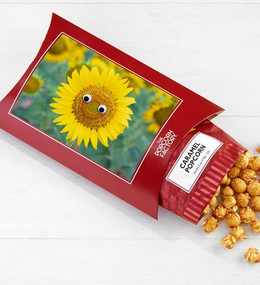 Cards With Pop™ Happy Sunflower